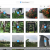 Copiare Foto da iPhone/iPad a Chiavetta USB