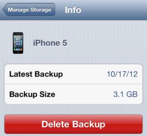 delete-icloud-backup02