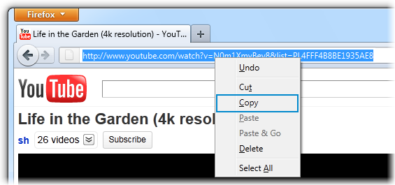 how to download youtube videos from realdownloader