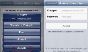 1463315487-7440-directly-delete-apple-id