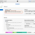 Come Trovare UDID iPhone/iPad con e Senza iTunes