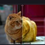 Come Migliorare Qualità Foto (con un click)