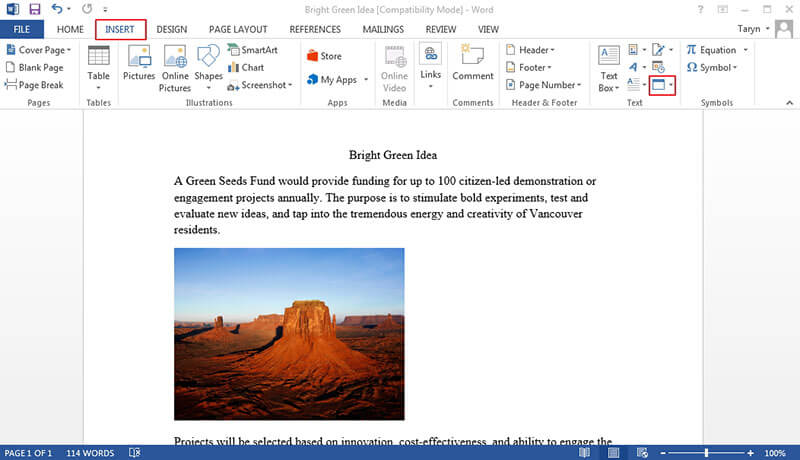 insert word document into word