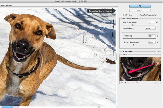 All Ways to Deblur Photos - Apply Sharpness
